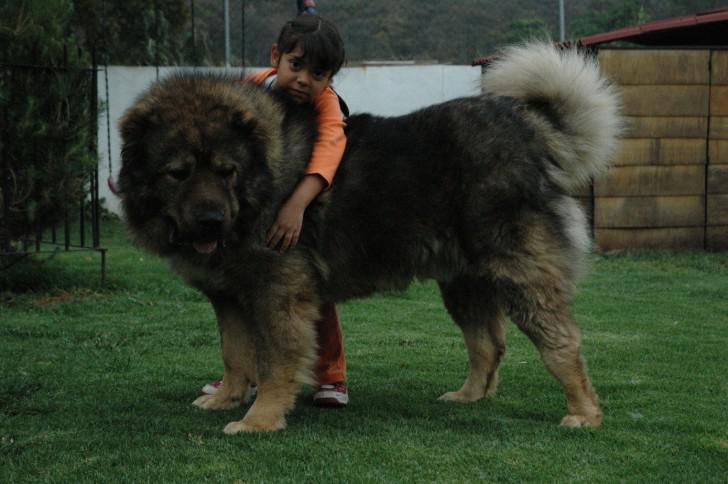 Кавказец с ребенком