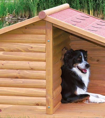 Как сделать своими руками будку для собаки: размеры и модели собачьей конуры с фото